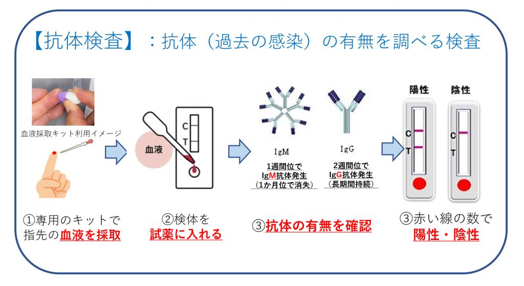 抗体検査の仕組み・図