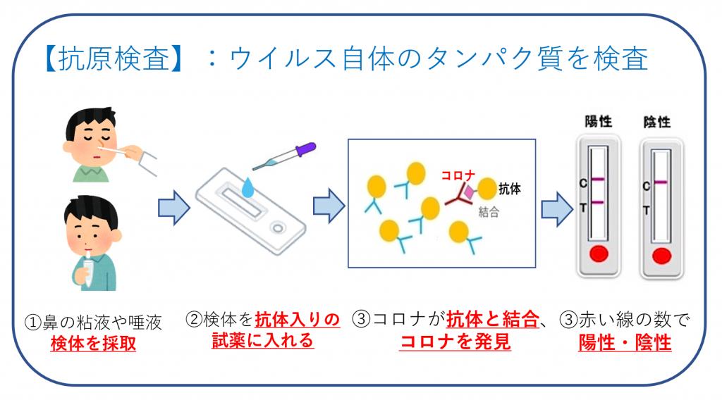 抗原検査の仕組み・図