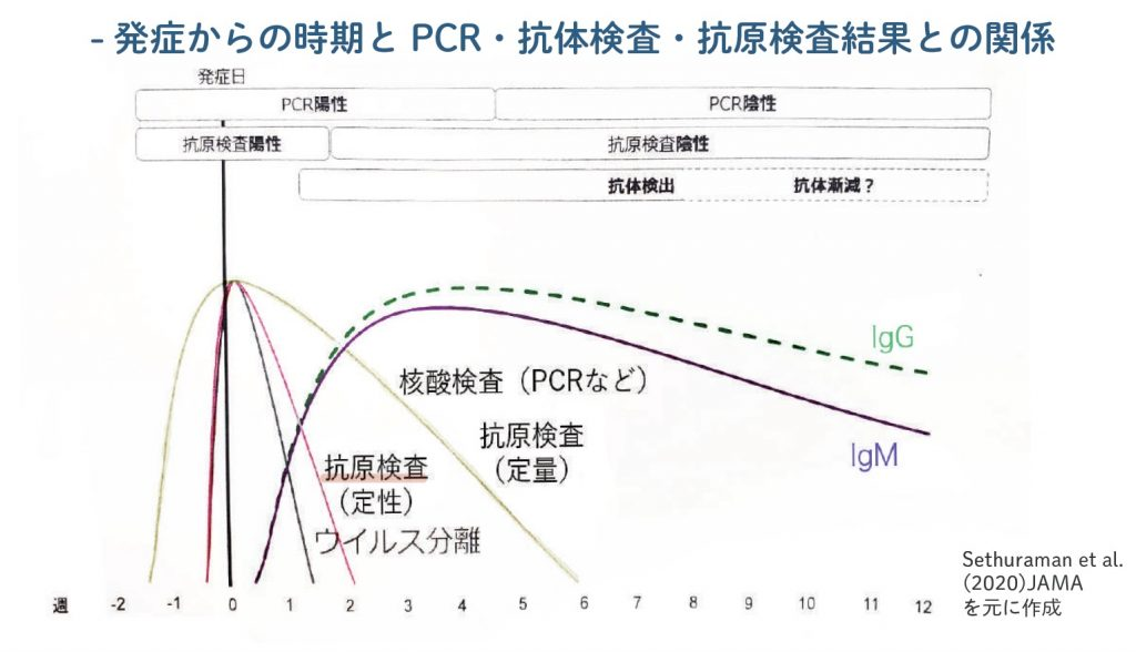 PCR検査、抗体検査、抗原検査、発症からの時期との関係