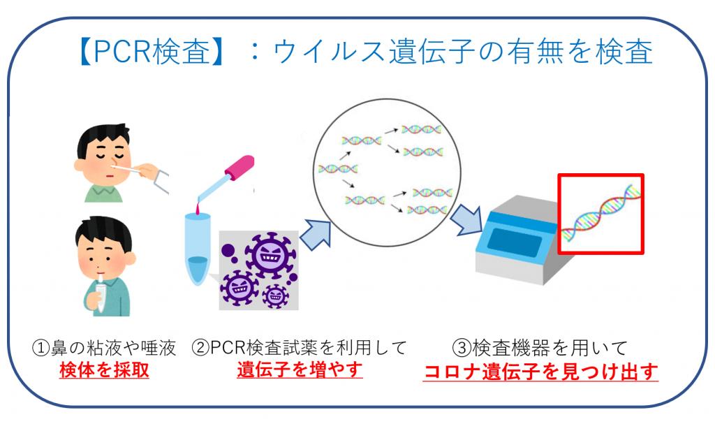 PCR検査の仕組み・図
