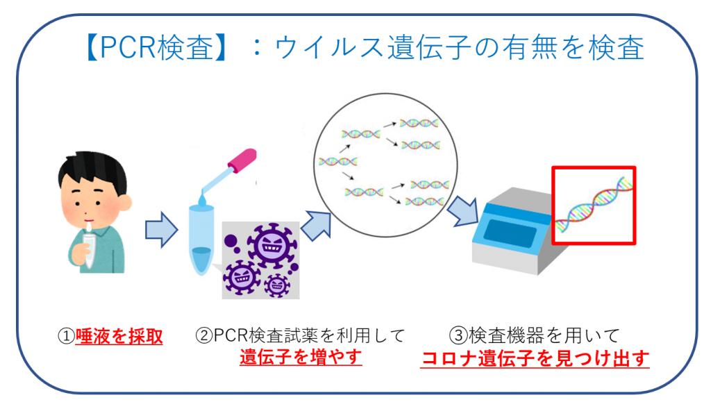 PCR検査の仕組み